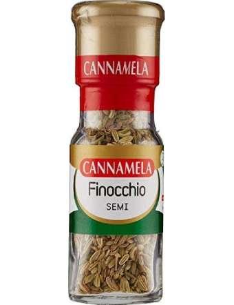 CANNAMELA SEMI FINOCCHIO GR 20