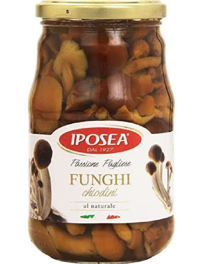 IPOSEA FUNGHI CHIODINI AL NATURALE GR 435